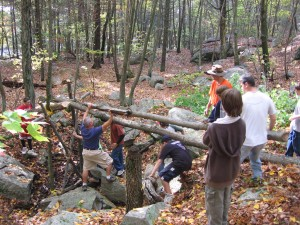 Building a log bridge