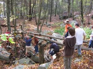 Building a log bridge